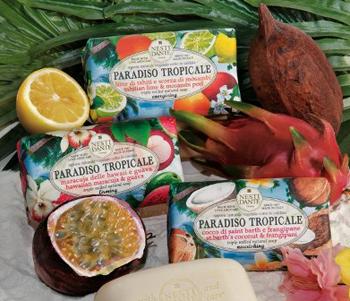 Nesti Dante Paradiso Tropicale